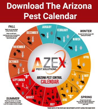 Download the pest calendar