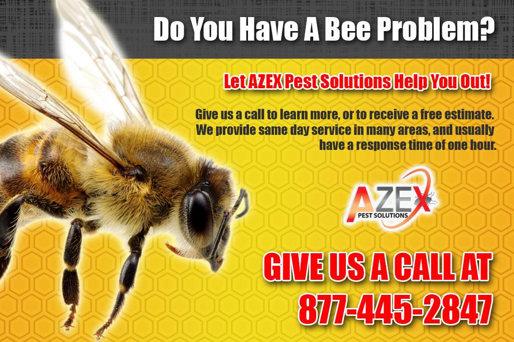 Bee-Header