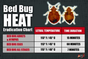 Bed Bug Heat Temp Guide | AZEX Pest