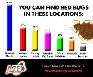 Jan 26 - where are bed bugs