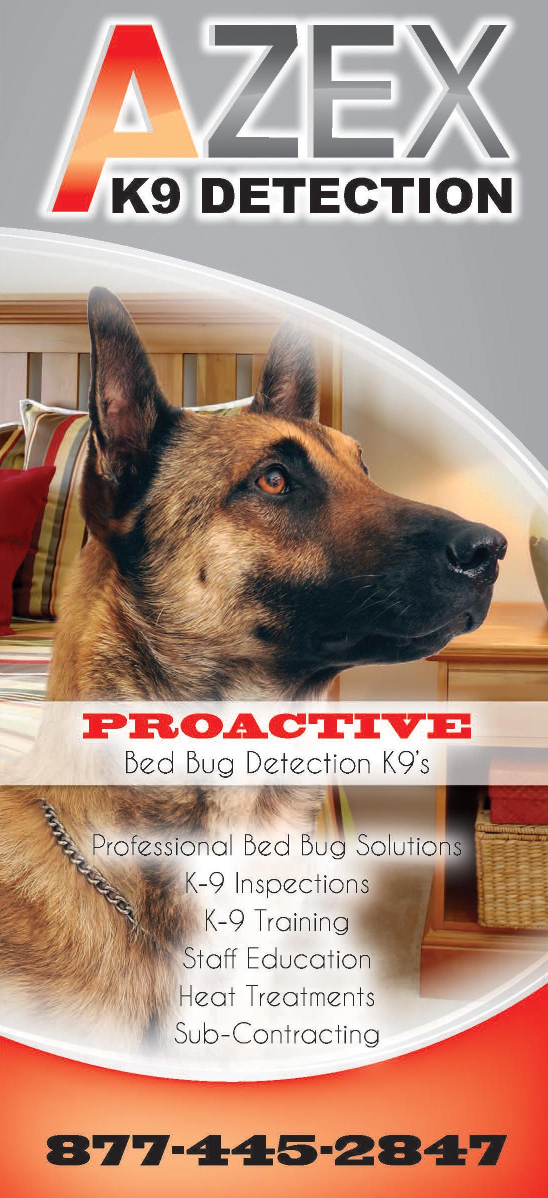 What do bed bugs look like k9 bug detectors - Bed Bug K9