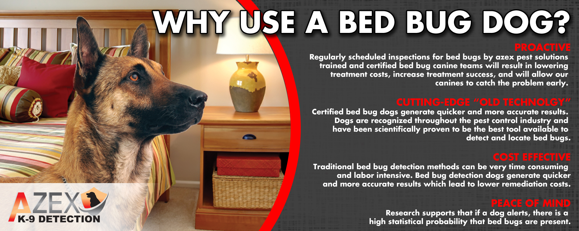 Bed Bug Detection Dogs Azex Pest Solutions Pest Bed Bug