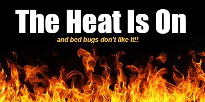 """""""The Heat Is On"""", and bed bugs don't like it!"""