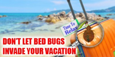 Keeping Your Family Safe From Bed Bugs This Summer
