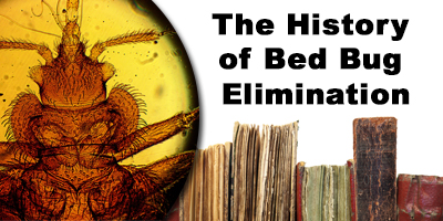 History of Bed Bug