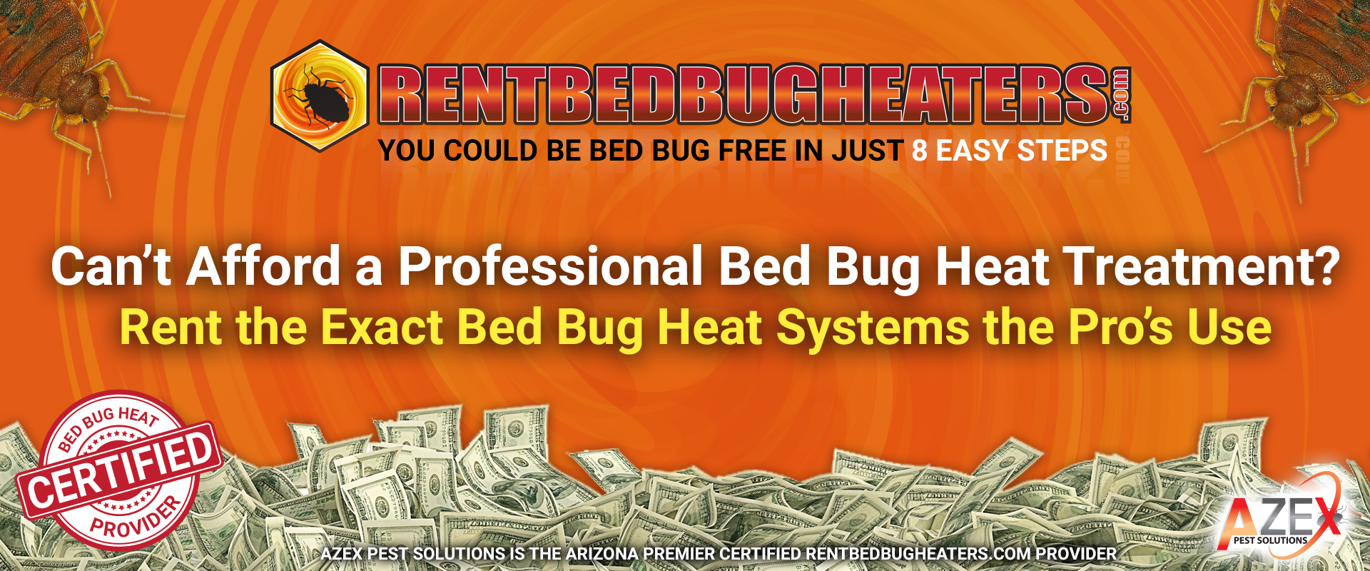 Using Heat To Kill Bed Bugs