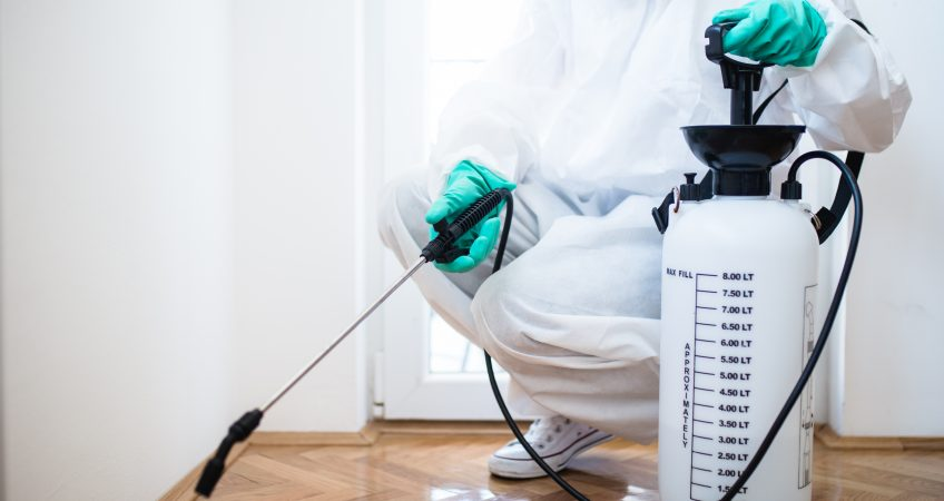 Chemicals Harm More Than Help When It Comes To Getting Rid Of Bed Bugs