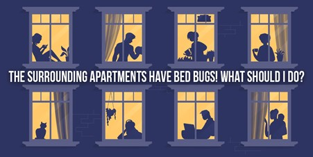 The Surrounding Apartments Have Bed Bugs! What Should I Do?